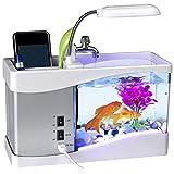 Mini USB LCD Desktop Aquarium Lamp Light Fish Tank Timer Calendar Clock Desk Pen Holder 6 White LED and 2 Colour-Changing LED - 24 x 20 x 9.7cm (White)