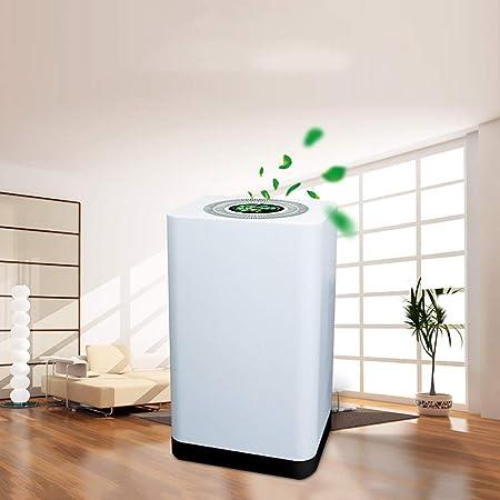 DW&HX Purificadores de Aire hepa para Fumadores, Olor Alergias Eliminador de, Filtro de Aire para Hogar y Oficina, Polvo, Humo, Molde, Mascotas Dander -Blanco: Amazon.es: Hogar