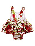 PrinceSasa Baby Girl Clothes Red Rose Floral