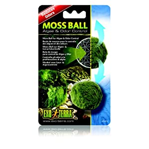 Exo Terra Exo Terra Moss Ball Clarity And Odour Control 8