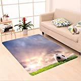 Nalahome Custom carpet n Soccer Ball on Green Grass Dark Clouds Sunrise Meadow Landscape Picture Print Blue Green White area rugs for Living Dining Room Bedroom Hallway Office Carpet (5' X 7')
