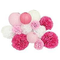 paper jazz 13pcs Decorative Paper pom pom Lantern Honeycomb Ball for Wedding Birthday Baby Shower Graduation Meeting Event Party Decoration(Pink White)