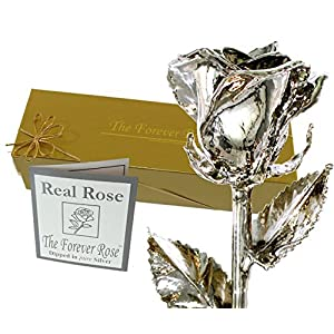 Forever Rose Silver Dipped Real Rose w/Gold Gift Box by The Original USA Brand! (Silver Rose) 44