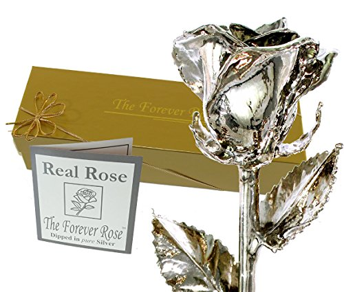 Silver Anniversary Rose - Forever Rose Silver Dipped Real Rose w/Gold Gift Box by The Original USA Brand! (Silver Rose)