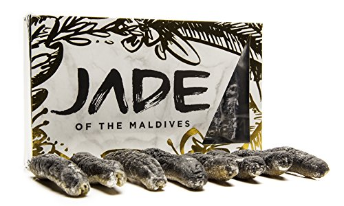 Jade Of The Maldives Dried Sea Cucumber  Sandfish  H  Scabra  8 Pieces