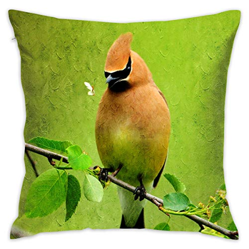 (GSRONY Art Throw Pillow Cover, Woodpecker Pecker Hickwall Peckerwood Brown Bird Tree Branch Green Home Decoration Soft Pillow Case for Sofa/Couch/Car/Bed One Size)
