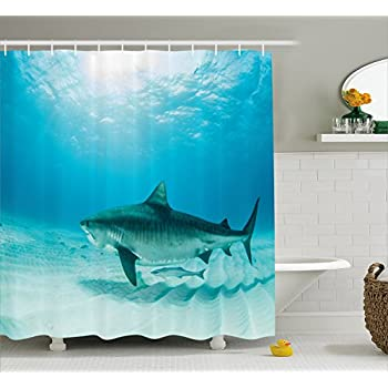 Sea Animal Decor Shower Curtain By Ambesonne, Tiger Shark On The Bottom Of  Water Danger