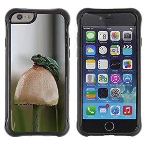Híbridos estuche rígido plástico de protección con soporte para el Apple iPhone 6 (4.7) - forest mushroom nature green