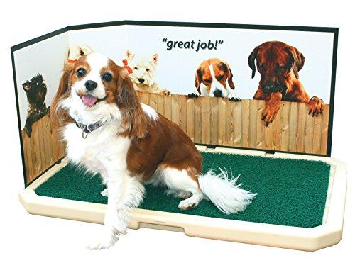 PetSafe-Piddle-Place-Protective-Guard-Great-job