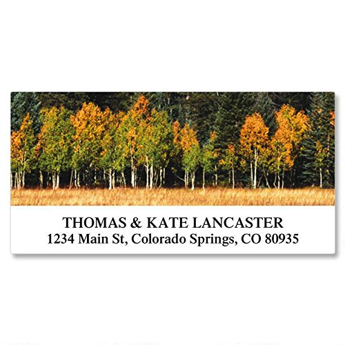Autumn Colors Self-Adhesive, Flat-Sheet Deluxe Address Labels (24 Designs)
