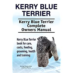 Kerry Blue Terrier Dog. Kerry Blue Terrier dog book for costs, care, feeding, grooming, training and health. Kerry Blue Terrier dog Owners Manual. 1