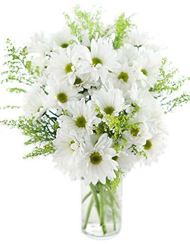 Bouquet of Bountiful White Daisies: 10 White Daisy Poms and 5 Yellow Solidago Asters with Vase