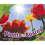 Plants in Spring (All about Spring)