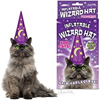 INFLATABLE WIZARD HAT FOR CATS by Accoutrements