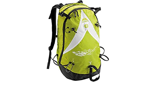 Amazon.com : Dynastar Cham Abs Compat.Pro Rider 25GR Backpack : Sports & Outdoors