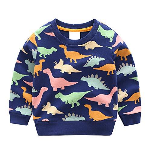 sweatshirt cute dinosaur long sleeve