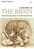 A History of the Brain: From Stone Age surgery to modern neuroscience