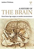 A History of the Brain, Andrew P. Wickens, 1848723652