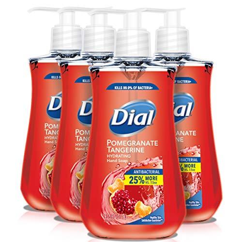 dial antibacterial soap liquid - 9