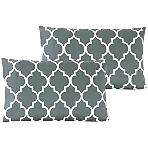 Mellanni Luxury Pillowcase Set - HIGHEST QUALITY Brushed Microfiber Printed Bedding - Wrinkle, Fade, Stain Resistant - Hypoallergenic (Set of 2 Standard Size, Quatrefoil Silver - Gray)