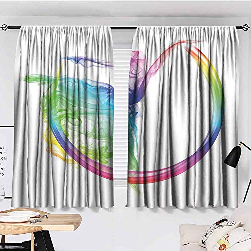 Fantasia Hippo Ballerina (SONGDAYONE Multi-Pattern Curtain Abstract Home Decor Smoke Dance Shape Silhouette of Dancer Ballerina Rainbow Colors Fantasy Foldable W55)