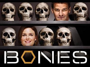 Amazonde Bones Staffel 4 Ansehen Prime Video