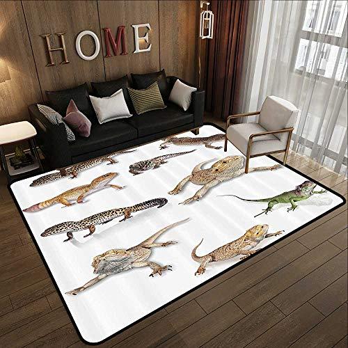 Rubber mat,Reptile Decor,Multi Colored Staring Leopard Gecko Family Image Primitive Reptiles Wildlife Art Print Home,Multi 55