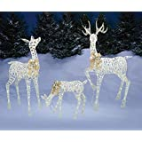 "Set of 3 Lighted White Gold Deer Family (Buck 60"", Doe 52"", Fawn 28"") - Total of 360 LIGHTS, Reindeer Display Outdoor Holiday Yard Decoration"