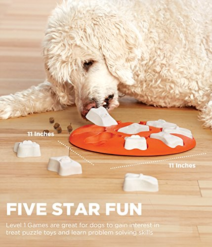 51KYv4TtfNL - Nina Ottosson Dog Smart Beginner Dog Puzzle Toy - Engaging and Interactive Treat Dispensing Game for your Dog's Toy Box