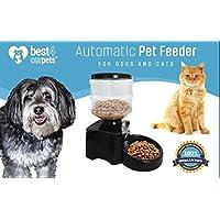 Mejor 4 comederos automáticos para mascotas – dispensa la parte correcta de comida para gato o perro controlado por tiempo programable para ayudar a controlar el peso y mantener a su mascota saludable y conveniente para los viajeros