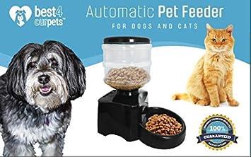 Mejor 4 comederos automáticos para mascotas – dispensa la parte correcta de comida para gato o perro controlado por tiempo programable para ayudar ...