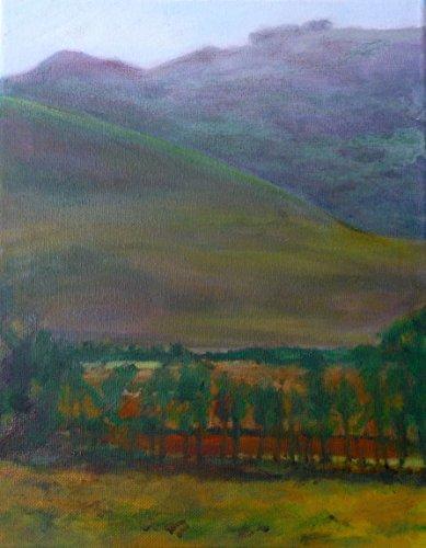 Napa Bedroom - Napa Valley Fields
