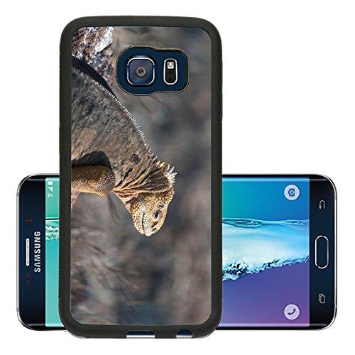 luxlady-premium-samsung-galaxy-s6-edge-aluminum-backplate-bumper-snap-case-mariquita-come-pulgones-i