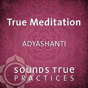 True Meditation Speech