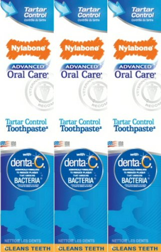Nylabone Advanced Oral Care Tartar Control Toothpaste 3pk