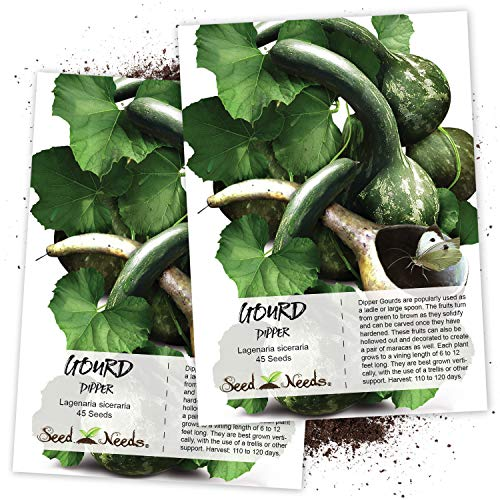 Seed Needs, Dipper Gourd (Lagenaria siceraria) Twin Pack of 45 Seeds Each Non-GMO