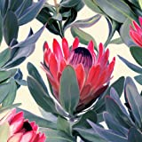 Fintie Folio Case for Amazon Fire (Previous 5th Generation, 2015 7 inch) - Slim Fit Premium Vegan Leather Standing Protective Cover, Protea Paradise
