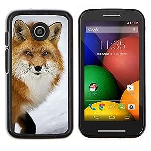 EJOOY---Cubierta de la caja de protección para la piel dura ** Motorola Moto E ** --zorro rojo animales inteligentes naturaleza de invierno