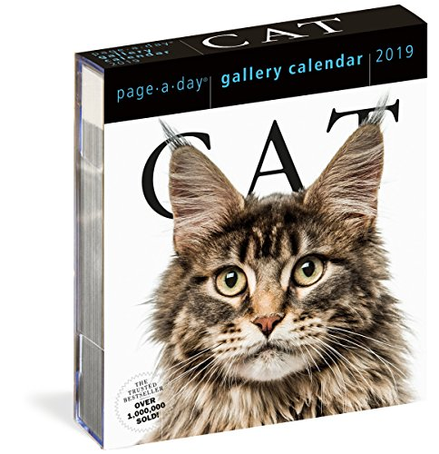 Cat Page-A-Day Gallery Calendar 2019