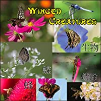 Winged Creatures Digital Image CD