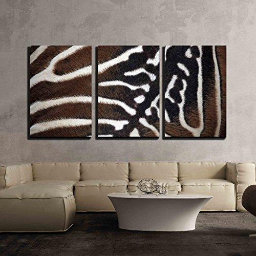 wall26 - 3 Piece Canvas Wall Art - Maneless Zebra (Equus Quagga Borensis) Skin Texture. Wildlife Animal. - Modern Home Decor Stretched and Framed Ready to Hang - 24