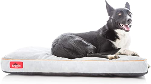 Brindle-Shredded-Memory-Foam-Dog-Bed-with-Removable-Washable-Cover
