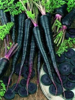 Hazzard's Seeds Carrot Black Nebula 1,000 seeds