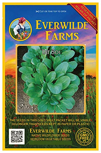 Everwilde Farms - 2000 Tat Soi Chinese Cabbage Seeds - Gold Vault Jumbo Seed - Cabbage Packet Seed