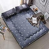 DULPLAY Soft Foldable Tatami Bed Mattress, Single Student Thickening Bed Mattress Anti-Bacteria-A 90x200cm(35x79inch)