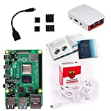 Vilros Raspberry Pi 4 Basic Starter Kit with Official Case (Red/White) (2GB)