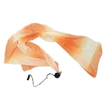 Amazon.com : dailymall Belly Dance Silk Veil Poi - Belly ...