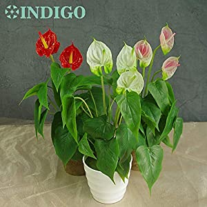 ShineBear Anthurium Bouquet Calla (18pcs Leaves + 3 Flowers) Calla Real Touch Wedding Display Flower Artificial Home Flower 40