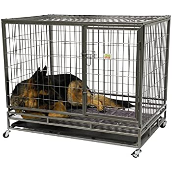 Amazon.com : Go Pet Club Heavy Duty Metal Cage, 43-Inch by
