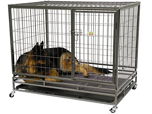 Go Pet Club Heavy Duty Metal Cage, 43-Inch by 30 by 38-Inch by Go Pet Club